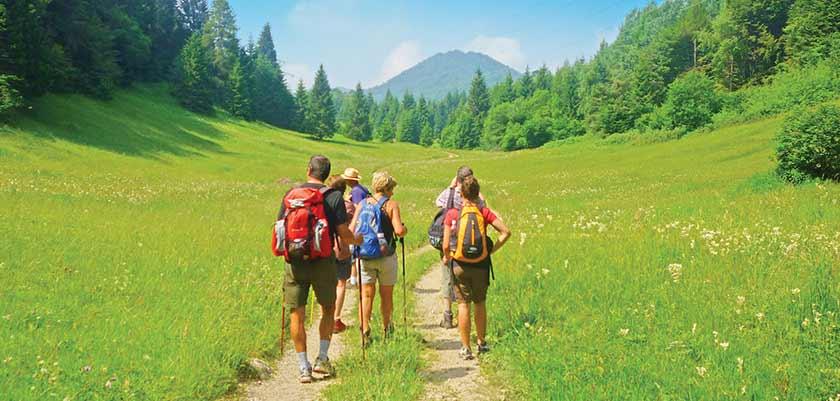 Wonderful walks through the alpine landscape.jpg